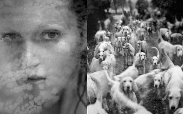 Black and white photo camilla akrans of model Anja Rubik looking through foggy glass numero 113 and a blur picture of a bunch of white dogs by norman parkinson