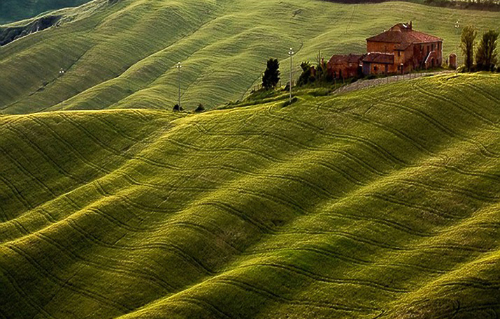 Inspiration Friday image of rolling bright green grassy hills